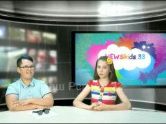 «NewsKids33» Новости