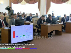 Депутаты Законодательного Собрания преодолели вето губернатора